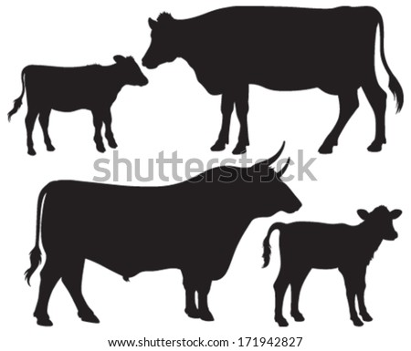 Quality black and white vector silhouettes of a bull, a cow and two calves - stock vector