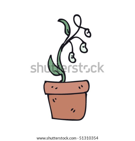 Beans Plant Drawing Quirky Drawing of a Bean Plant