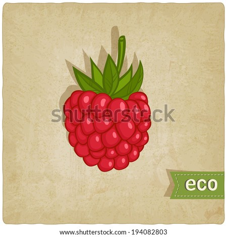 raspberries eco background - vector illustration. eps 10 - stock vector