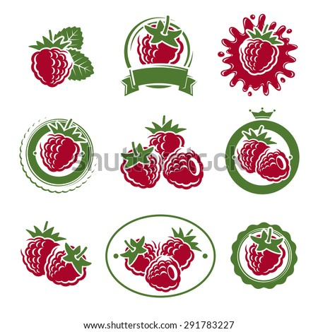 Raspberry labels and elements set. Vector - stock vector