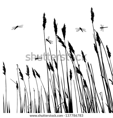 Real grass silhouette and  few dragonflies  - vector - stock vector