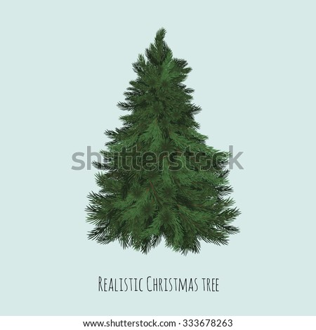 Realistic Christmas spruce tree. - stock vector