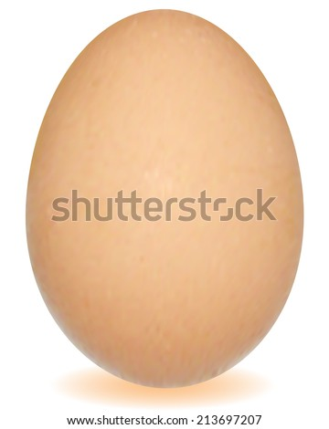Realistic egg on a white background - stock vector
