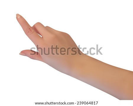 realistic female hand isolated, vector - stock vector