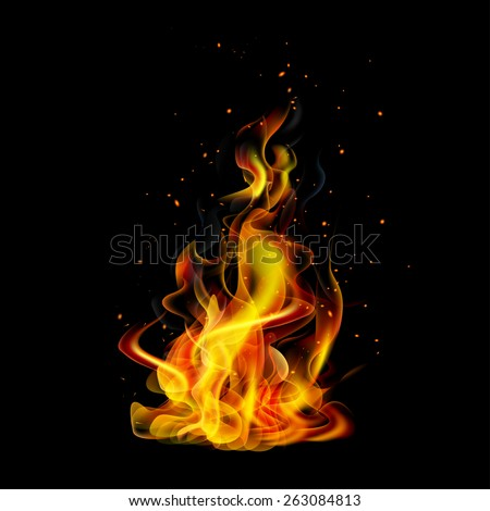 Realistic fire on a black background vector - stock vector