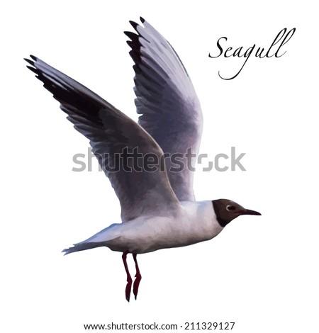realistic flying bird (seagull) - a symbol, emblem, concept of flight, freedom - vector illustration - stock vector