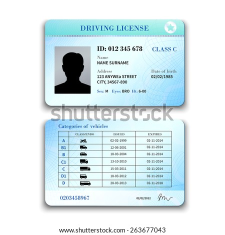 Realistic international plastic driver licence back and front template isolated vector illustration - stock vector