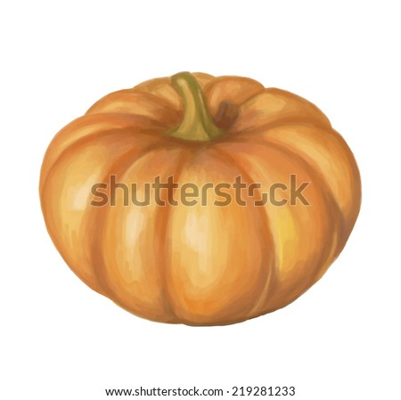 Realistic paint isolated vector pumpkin on white background - stock vector
