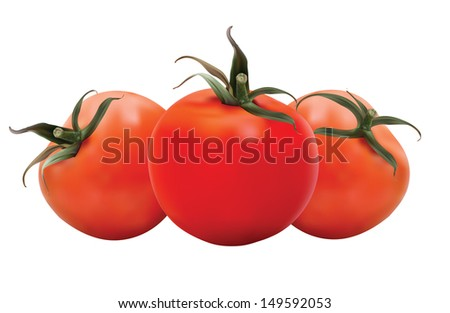 Realistic Tomatoes in editable eps10 format. The objects are in groups and contains mesh. - stock vector