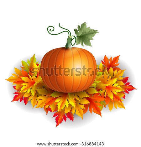 Realistic vector pumpkin on autumn leaves with shadows  - stock vector
