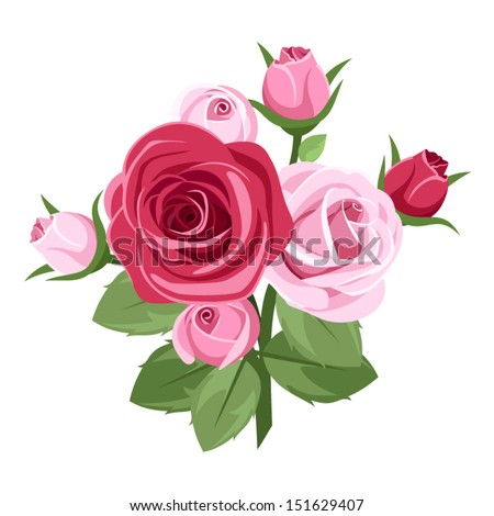 Red and pink roses. Vector illustration. - stock vector