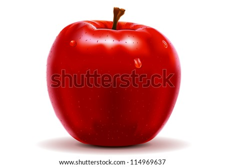 red apple isolated on white - stock vector