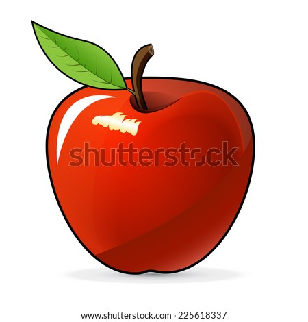 Red apple - vector illustration, on a white background - stock vector