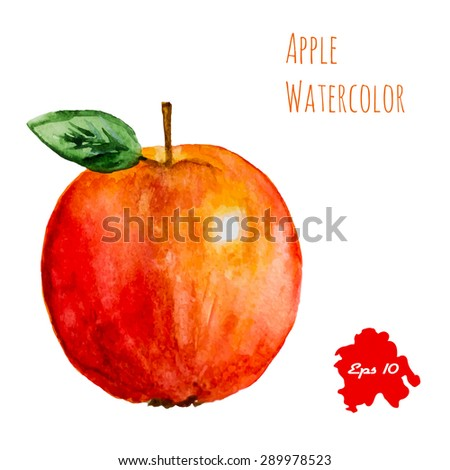 Red apple, watercolor painting on white background. Isolated illustration - stock vector