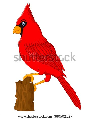 Red Cardinal sitting on a tree branch - stock vector
