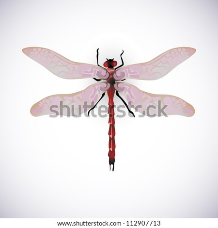 red dragonfly vector image high resolution collection - stock vector