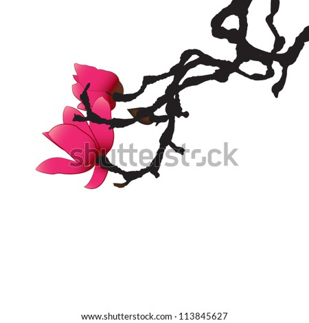 Red Magnolia, isolated, vector illustration - stock vector