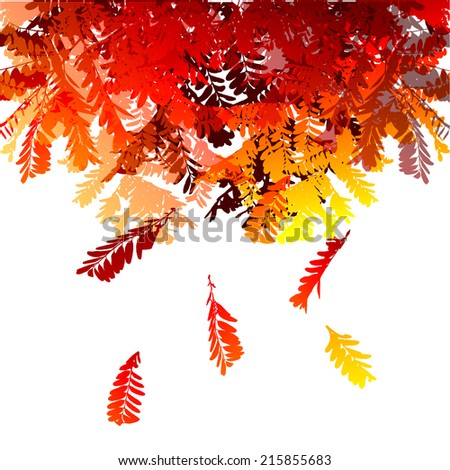 Red-orange falling leaves of acacia. Vector - stock vector