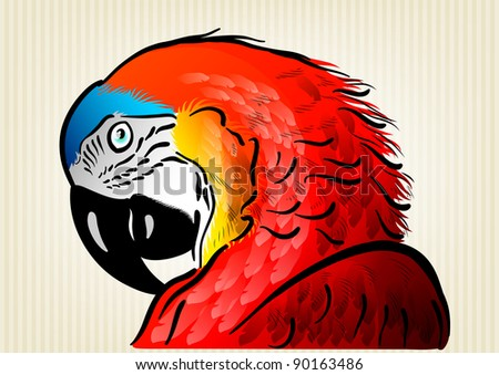 red parrot on the background - stock vector
