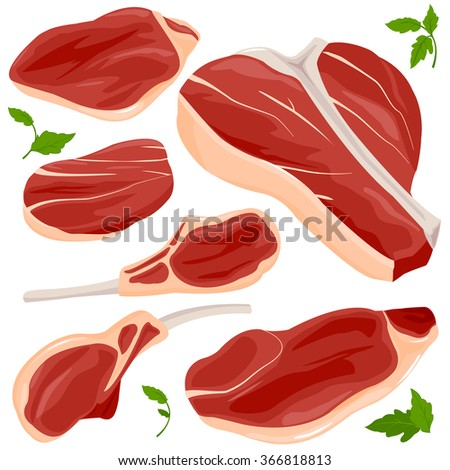 Red raw meat and steaks vector collection. - stock vector