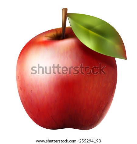 Red realistic isolated vector apple with green leaf - stock vector
