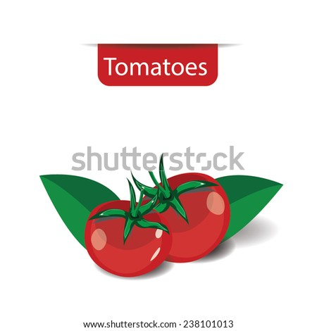 red ripe tomato vector illustration  on white background 2 - stock vector