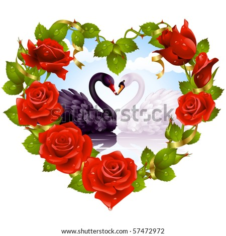 Red Rose frame in the shape of heart and couple swans - stock vector