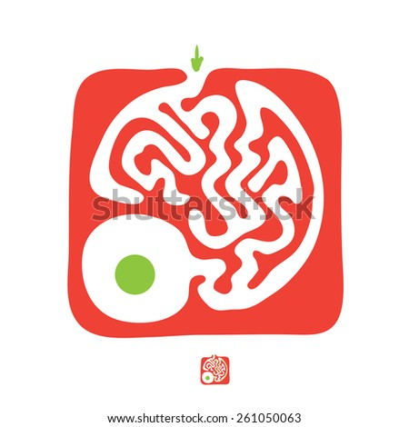 Red vector maze, labyrinth illustration - stock vector