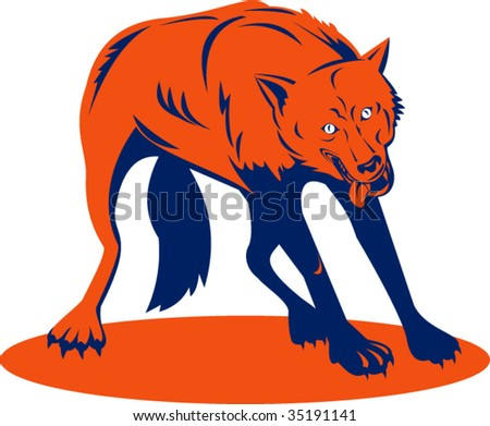 Red wolf about to attack - stock vector