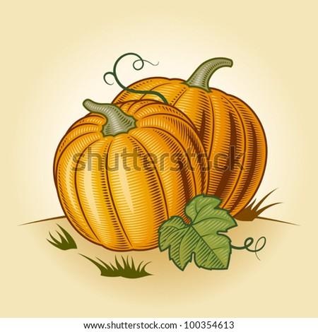 Vintage pumpkins clipart free