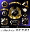 Retro vector golden framed label. Premium design elements. - stock vector
