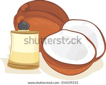 Ripe coconuts and coconut oil. Vector - stock vector