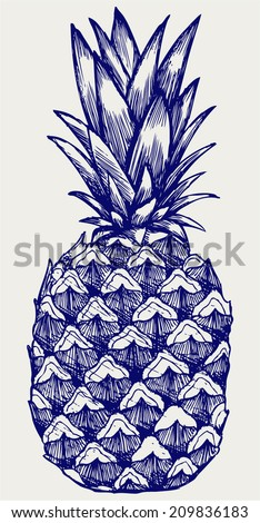 Ripe tasty pineapple. Doodle style - stock vector