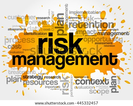 Risk Management word cloud collage, business concept background - stock vector