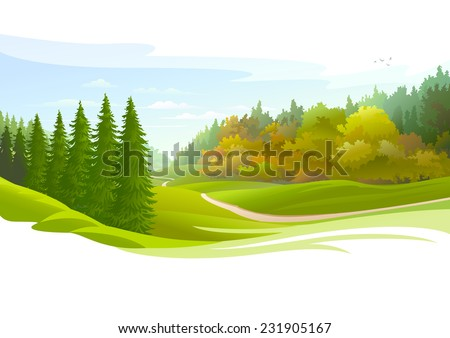 Road across a meadow and Pine Trees - stock vector