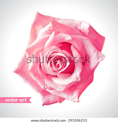 Rose close up. Vector art. Love concept for wedding invitations, cards, tickets, congratulations, branding, boutique logo, label. Red pink beige soft colors. Web, website and mobile interface - stock vector