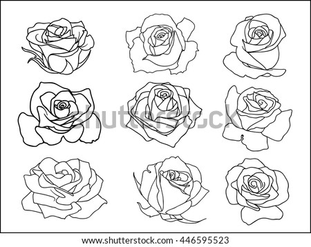 rose icon . Vector illustration. - stock vector