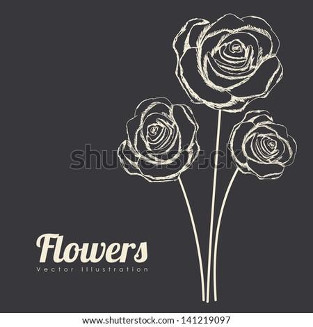 roses design over black background vector illustration - stock vector