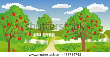 Rural landscape with apple tree - stock vector