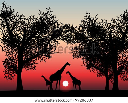 safari - stock vector