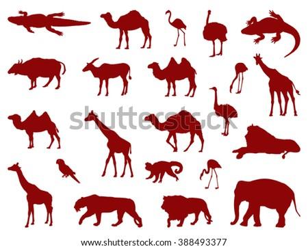Safari animals - stock vector