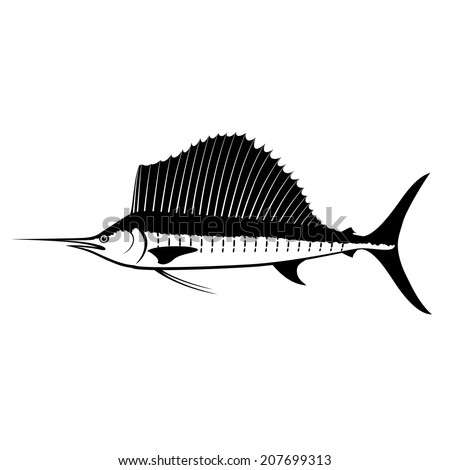 Sailfish Silhouette Isolated on White  - stock vector