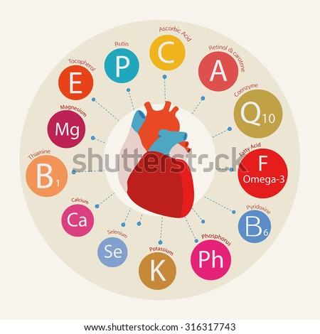 Schematic representation of the heart and the basic substances required for normal cardiac activity.  Nutrition and Heart Health. - stock vector