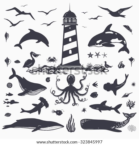 sea animals and creatures, vector silhouettes of marine animals,isolated on white: dolphins, whales, octopus, sharks, fish - stock vector