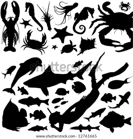 sea animals and scuba diving vector - stock vector
