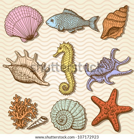 Sea collection. Original hand drawn illustration in vintage style - stock vector