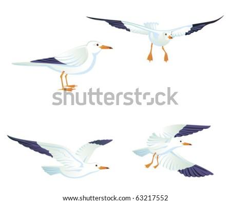Sea gulls, vector illustration - stock vector