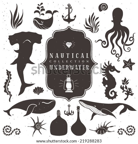 Sea life, marine animals. Vintage hand drawn elements in nautical style.Vol.2 Vector illustrations on white background. - stock vector