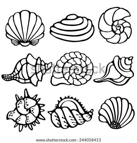 Sea shells icon set isolated on a white background, art logo design  - stock vector