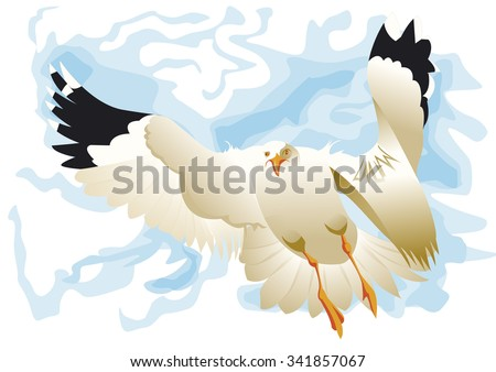 seagull flying front - stock vector